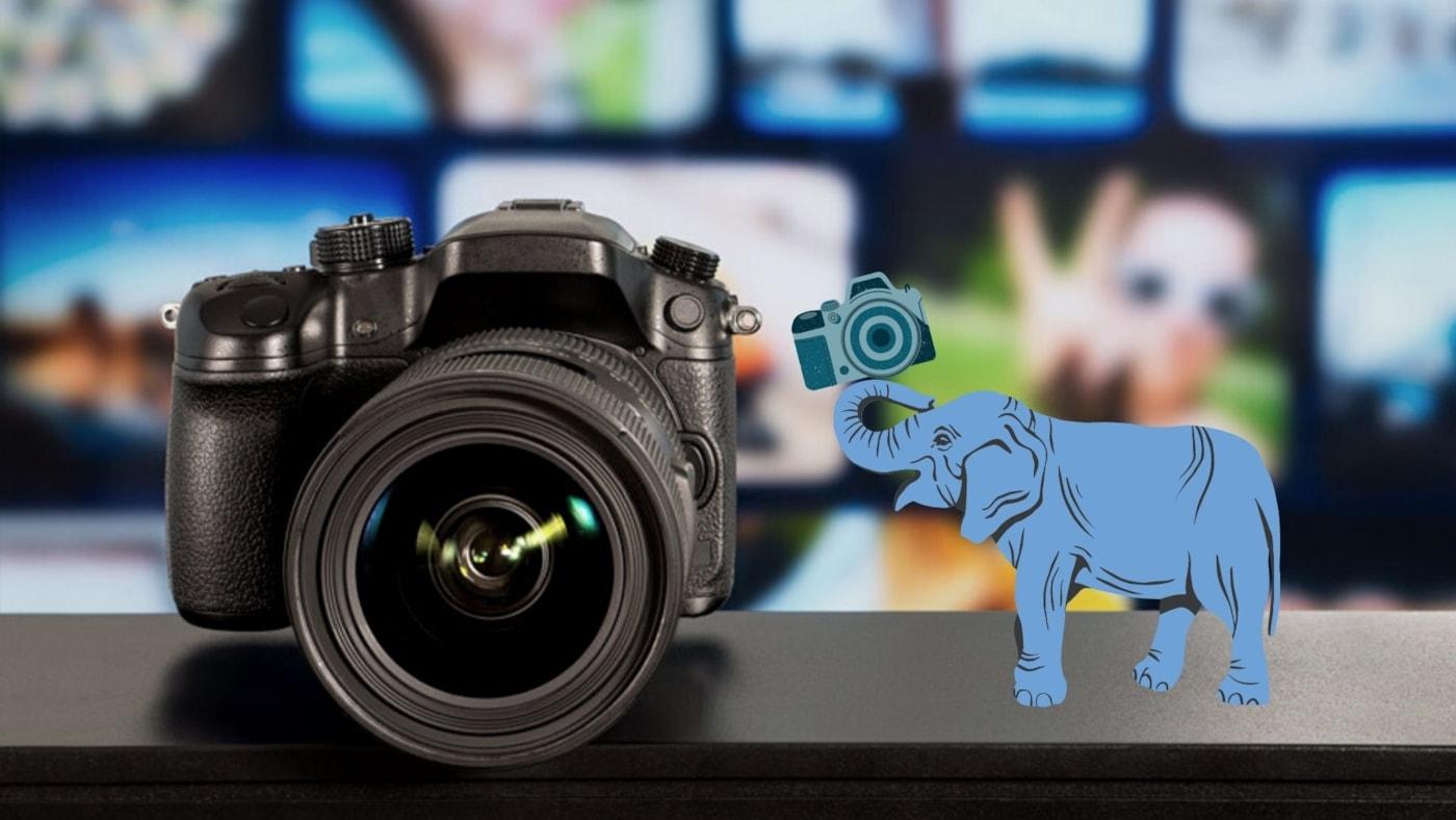 【モデル別】SONYのαシリーズ、カメラ初心者が選ぶときのコツ